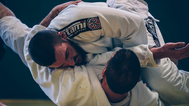 Brazilian Jiu Jitsu Training Camp